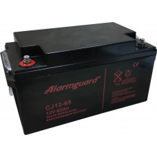 Akumulátor Alarmguard CJ12-65